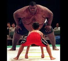 Sumo Wrestlet